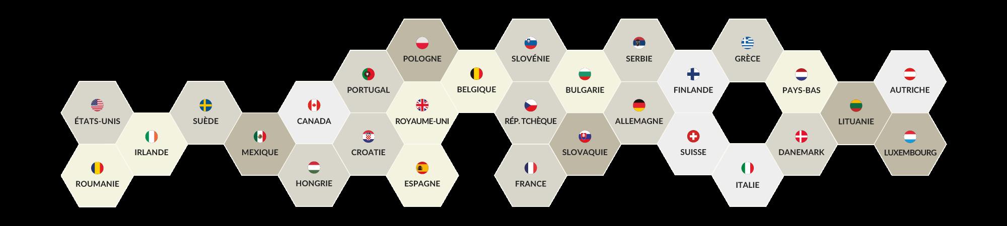 Nous sommes le seul opérateur avec son propre réseau dans 29 pays - Dialoga