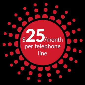 $25/month per telephone line - Sword - Dialoga
