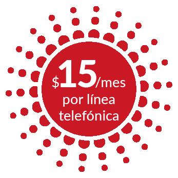 $15 /mes por línea telefónica - Sword, línea WebRTC - Dialoga
