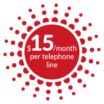 $15 /month per telephone line - Sword, WebRTC line - Dialoga